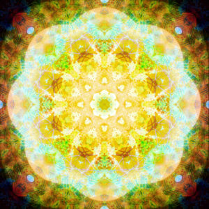 Photographic flower mandala, yellow, turquoise, green, brown,