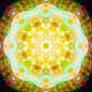 fotografisches Blüten Mandala, gelb, türkis, grün, braun,