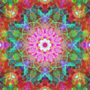 Photographic flower mandala, pink, red, turquoise,