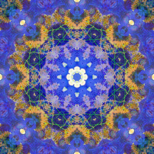 Photographic flower mandala, blue, purple, ocher,