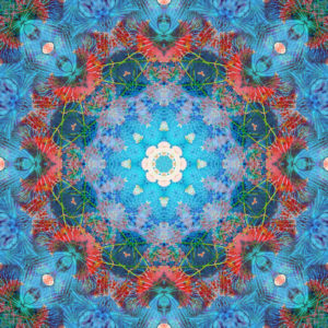 Photographic flower mandala, blue, turquoise, red,