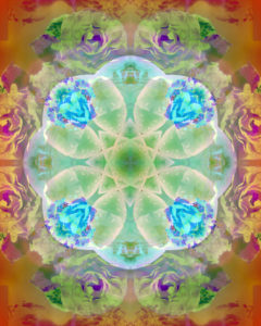 Photographic flower mandala, green, door, orange,