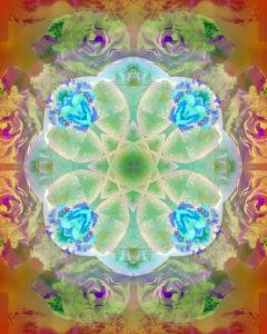 fotografisches Blüten Mandala, grün, türis, orange,