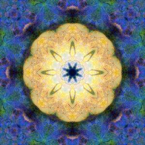 fotografisches Blüten Mandala, gelb, blau, grün,