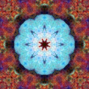 fotografisches Blüten Mandala, türkis, orange, lila,