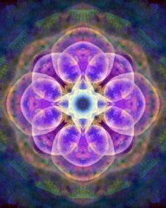 fotografisches Blüten Mandala, lila, blau,