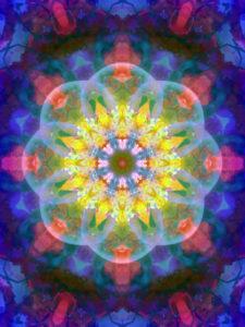 fotografisches Blüten Mandala, gelb, pink, türkis, blau,