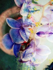 Fotomontage, Frau, Blüten, Bäume, Detail,