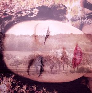 Fotomontage, Frau, Landschaft, Bäume, Detail, Farbfilter,