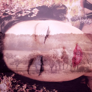 Photomontage, woman, landscape, trees, detail, color filter,