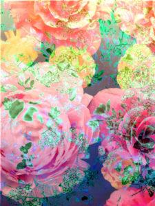 Fotomontage, Blüten, Detail,