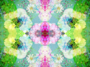 Photographic flower pattern, symmetrical