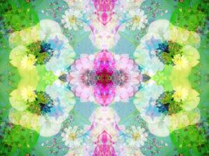 fotografisches Blütenmuster, symmetrisch