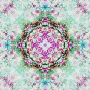 Composing von Blumen in ein Mandala Ornament