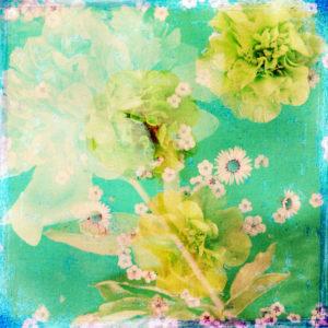 Composing, Blüten, unterschiedlich, Detail, gelb, türkis,