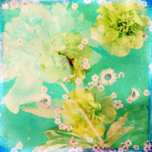 composing, flowers, different, detail, yellow, turquoise,