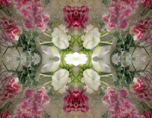 Blüten, Spiegelung, Composing, grün, rosa, weiß,