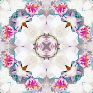 Flower mandala, composing, white, pink,