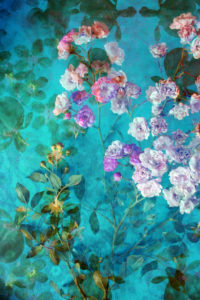 Compososing, flowers, blossoms, color filter, turquoise,