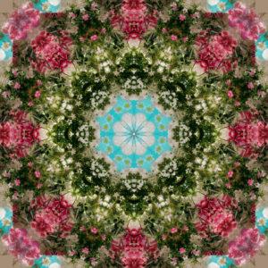 Blütenmandala, Composing, grün, rosa, türkis,