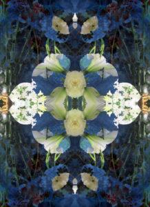 Blüten, Spiegelung, Composing, blau, gelb, weiß,