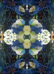Flowers, reflection, composing, blue, yellow, white,