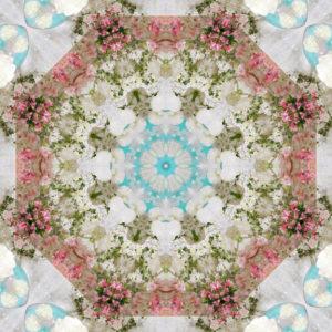 Blütenmandala, Composing, weiß, rosa, türkis,