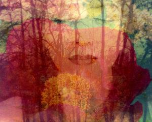 Composing mit Frauenportrait und Wald