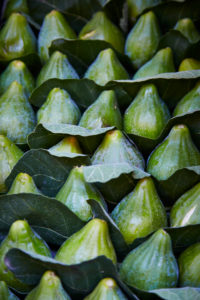 Figs, leaves, close-up, full frame, green, fresh, Italy