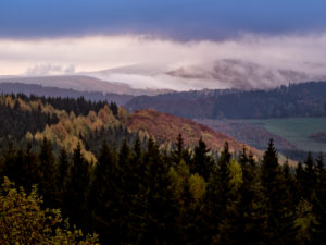 Germany, Hessia, Hessian Rhön nature reserve, UNESCO biosphere reserve, morning mood with fog on the Wasserkuppe