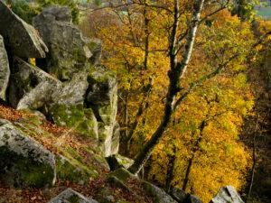 Deutschland, Hessen, Naturpark Hessische Rhön, UNESCO-Biosphärenreservat, die Steinwand bei Poppenhausen, Herbst