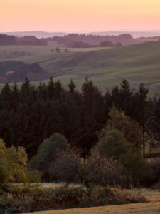Germany, Hessia, Hessian Rhön nature reserve, UNESCO biosphere reserve, Evening mood on the Wasserkuppe