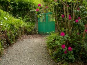 Irland, Donegal, Glenveagh Nationalpark, Gartenanlage von Glenveagh Castle, grünes Gartentor, Gartenmauer, blühender Rhododendronstrauch