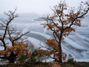 Europa, Deutschland, Hessen, Waldeck, Nationalpark Kellerwald-Edersee, Rotbuchen an der Stollmühle, Winterstimmung mit Eis und Schnee, Eisstrukturen