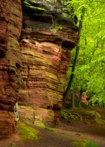 Deutschland, Rheinland-Pfalz, Naturpark Pfälzer Wald, Eppenbrunn, Altschlossfelsen aus Buntsandstein