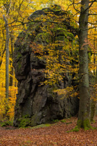 Europe, Germany, Hesse, Siegbach, Lahn-Dill-Bergland Nature Park, Autumn at the Wilhelmsteinen