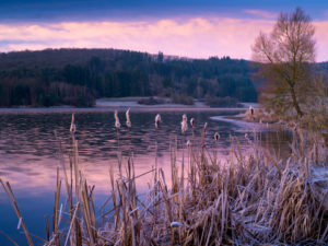 Europe, Germany, Hesse, Lahn-Dill-Bergland Nature Park, winter mood on the Aartalsee near Bischoffen