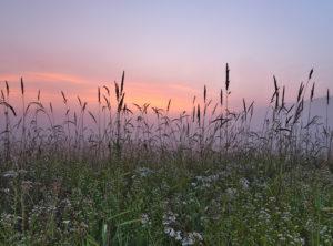 Europa, Deutschland, Hessen, Ederbergland, Naturpark Nationalpark Kellerwald-Edersee, Morgenstimmung mit Nebel in den Ederauen bei Herzhausen