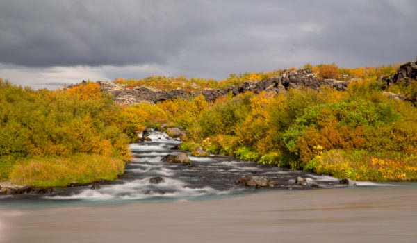Iceland, torrent at Barnafoss, West Iceland, autumn colors, overgrown lava stream, dark sky