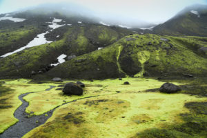 Iceland, Fjallabak, brook in Iceland moss, rainy mood, bilious green, snow remains