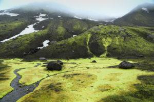 Island, Fjallabak, Bach im Islandmoos, Regenstimmung, giftgrün, Schneereste