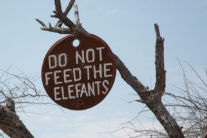 "Sign ""do not feed the elefants"" at a tree, Himbaland, Namibia"