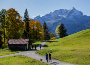 People with dogs hiking on the Eckbauer in autumn, view towards the Wetterstein Mountains with Alpspitze, blue sky, Bauernstadel, trees, hiking trail, Garmisch-Partenkirchen, Upper Bavaria, Bavaria, southern Germany, Germany