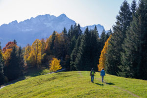 Man and woman hiking on meadow at Eckbauer in autumn, looking towards Wetterstein Mountains with Alpspitze and Zugspitze, blue sky, trees, hiking trail, Garmisch-Partenkirchen, Upper Bavaria, Bavaria, southern Germany, Germany