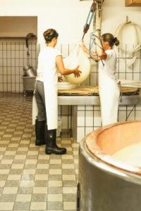 Die Sennerin verarbeitet frische Milch zu würzigem Alm-Käse, Reportage, Die geschnittene Milch wird aus dem Kessel gehoben und zu einem Laib weiterverarbeitet,