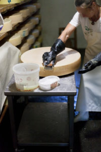 dairymaid porcesses fresh milk to aromatic alp cheese, The storage and maturation in the cellar,