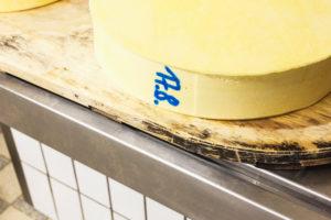 Die Sennerin verarbeitet frische Milch zu würzigem Alm-Käse, Von der Milch zum Käse,