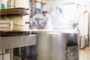 Die Sennerin verarbeitet frische Milch zu würzigem Alm-Käse, der Käsebruch wird gepresst und zu einem Laib weiterverarbeitet,