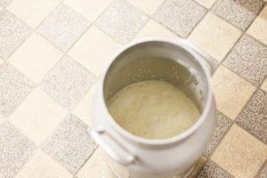 Herstellung von Butter, Milchkanne mit frischer Milch