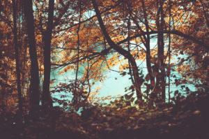 Ein See in den bayrischen Alpen im Herbst,